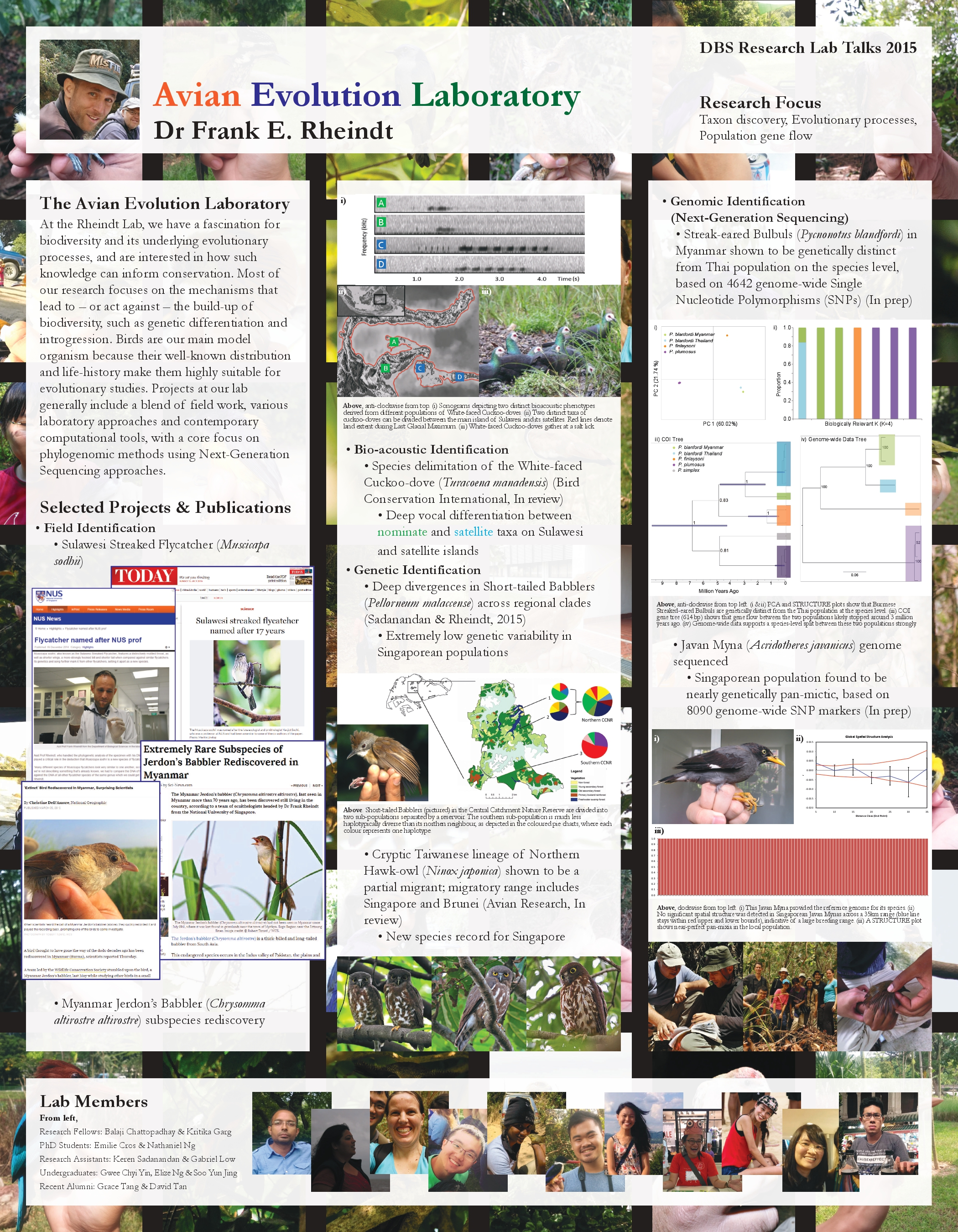 Avian Evolution Lab Research Talks Poster (2).compressed